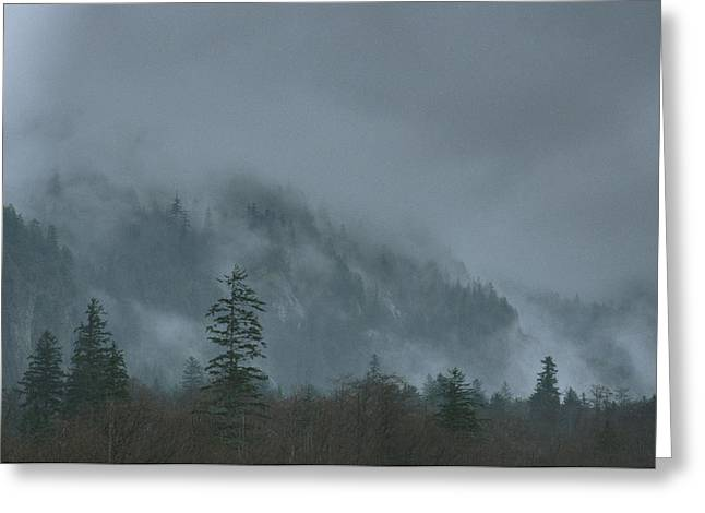 Woodland Scenes Greeting Cards - A Fog Covered Mountain In Alaska Greeting Card by Klaus Nigge