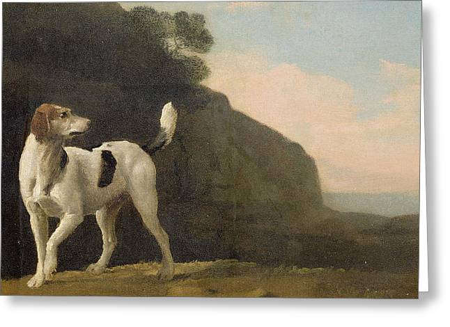 Foxhound Greeting Cards - A Foxhound Greeting Card by George Stubbs