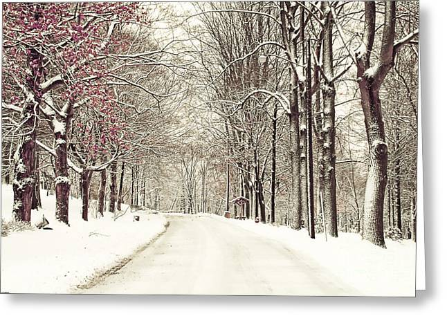 Lanscape Greeting Cards - A fresh snow storm Greeting Card by Tony  Bazidlo
