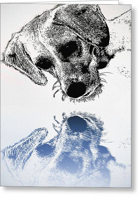 Dog Sketch Greeting Cards - A Friendly Reflection Greeting Card by Bill Cannon