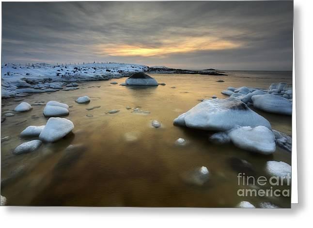 Nordland County Greeting Cards - A Frozen, Rusty Bay On Andoya Island Greeting Card by Arild Heitmann
