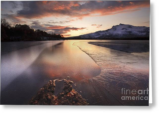 Sunset In Norway Greeting Cards - A Frozen Straumen Lake On Tjeldoya Greeting Card by Arild Heitmann