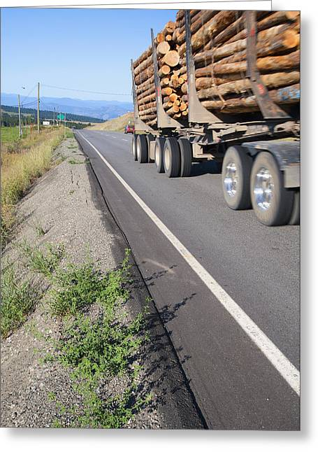 Logging Images Greeting Cards - A Full Loaded Logging Truck With Two Greeting Card by Marlene Ford