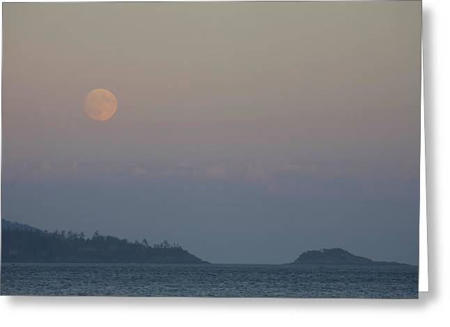 Vancouver Night Scene Greeting Cards - A Full Moon On A Summer Night Greeting Card by Taylor S. Kennedy