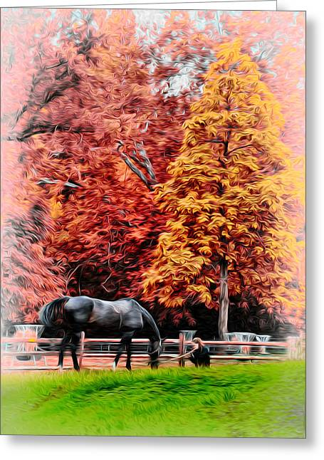 Valley Girl Greeting Cards - A Girl and her Horse Greeting Card by Bill Cannon