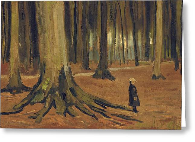 A Girl In A Wood Greeting Cards - A Girl in a Wood Greeting Card by Vincent van Gogh