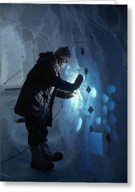 Color Bending Greeting Cards - A Glaciologist Takes Ice Cores Greeting Card by Albert Moldvay