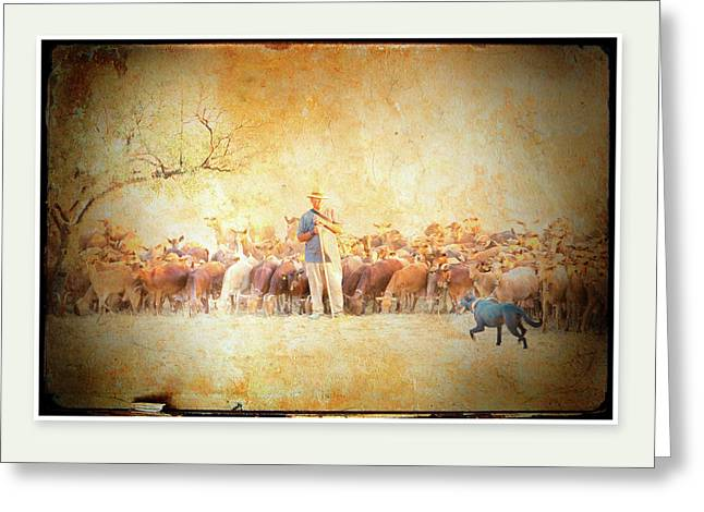 Working Dog Greeting Cards - A Goatherd Muses Greeting Card by Mal Bray