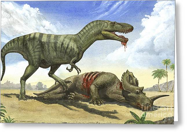 A Gorgosaurus Libratus Stands Greeting Card by Sergey Krasovskiy