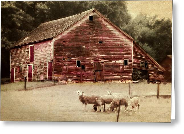 Recently Sold -  - Barn Yard Greeting Cards - A Grazy Day Greeting Card by Julie Hamilton