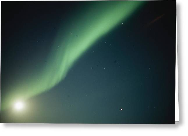 Park Scene Greeting Cards - A Green Curtain Of The Aurora Borealis Greeting Card by Norbert Rosing