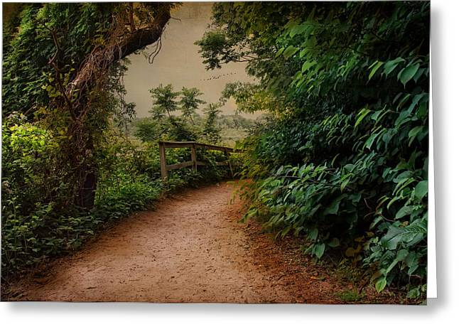 Green Foliage Greeting Cards - A Green Mile Greeting Card by Robin-lee Vieira