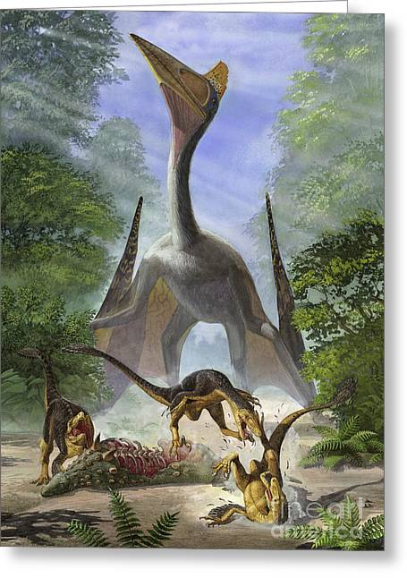 Dromaeosaurid Greeting Cards - A Group Of Balaur Bondoc Dinosaurs Greeting Card by Sergey Krasovskiy