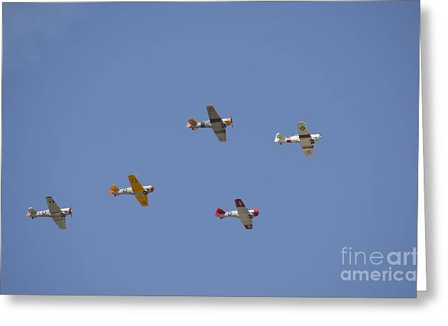 Cooperation Greeting Cards - A Group Of Restored Vintage Warbirds Greeting Card by Stocktrek Images