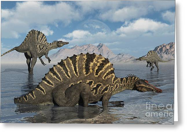 Saurischia Greeting Cards - A Group Of Spinosaurus Greeting Card by Mark Stevenson
