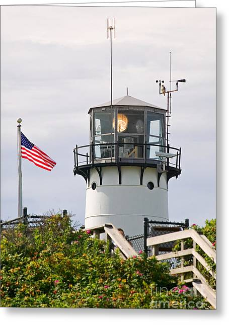 Chatham Greeting Cards - A hawk sits next to weather instruments on top of Chatham Lighth Greeting Card by Matt Suess