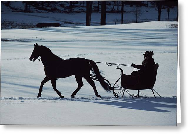 A Horse-drawn Sleigh Ride At Twilight Greeting Card by Ira Block