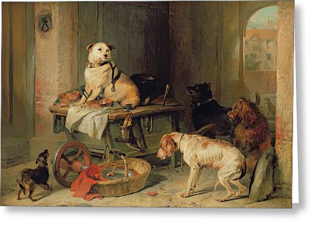 Divide Greeting Cards - A Jack in Office Greeting Card by Sir Edwin Landseer