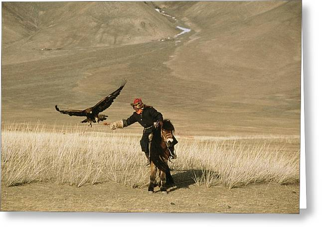 Falconry And Falconry Equipment Greeting Cards - A Kazakh Falconer Hunts His Golden Greeting Card by David Edwards