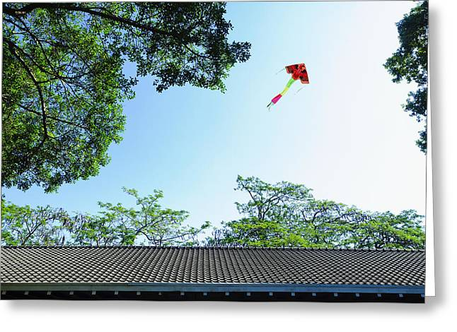 Coloured Greeting Cards - A Kite In The Air Greeting Card by Lawren Lu