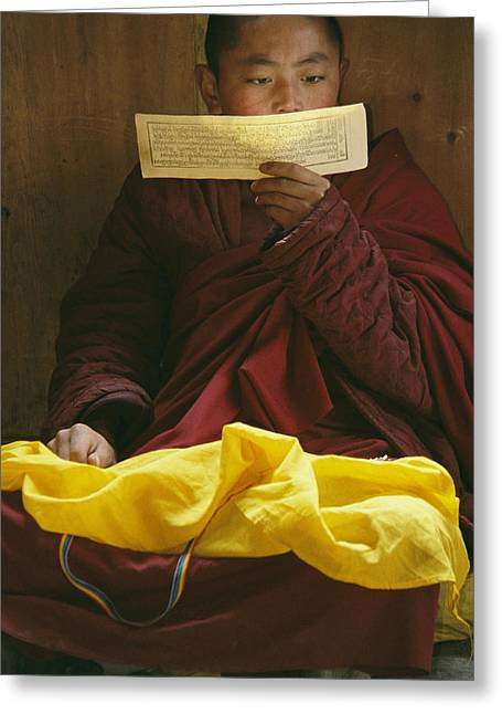 Scripture Reading Greeting Cards - A Lama Studies Tibetan Scripture Greeting Card by David Edwards