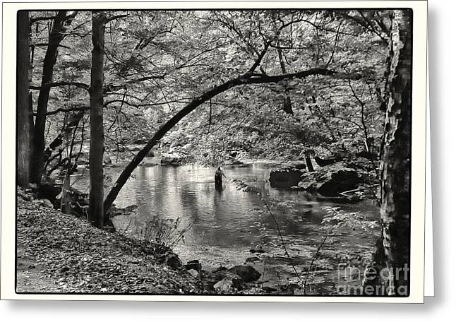Trout Greeting Card Greeting Cards - A Last Look At Summer Greeting Card by Susan  Lipschutz
