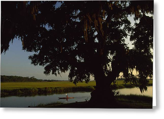 A Late Afternoon Kayaker In The Marshes Greeting Card by Michael Melford