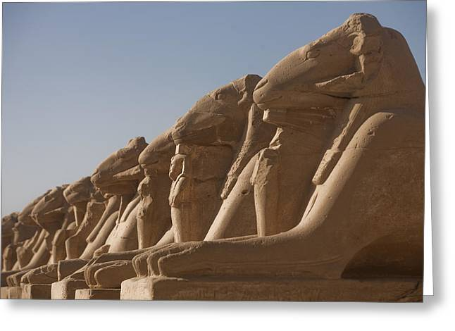 Pharaoh Greeting Cards - A Line Of Sphinxes With Rams Heads Line Greeting Card by Taylor S. Kennedy