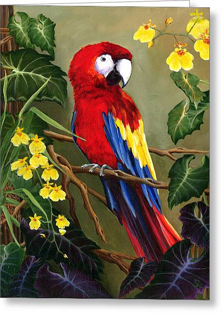 Wahoo Greeting Cards - A Little Bit Of Paradise Greeting Card by Sandra Camper