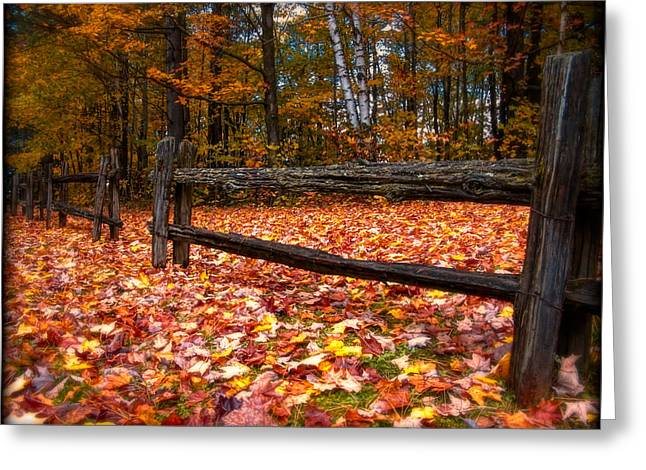 Best Of Red Carpet Greeting Cards - A Log Fence in a Carpet of Fall Leaves Greeting Card by Chantal PhotoPix