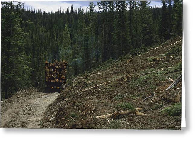 National Boundaries Greeting Cards - A Log Truck Hauls Wood From A Clearcut Greeting Card by Joel Sartore
