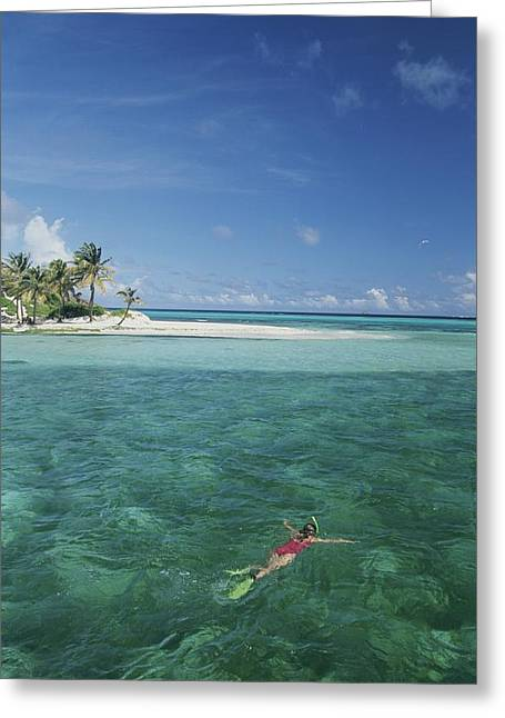 Grenadine Greeting Cards - A Lone Snorkeler Floats In Waters Greeting Card by Michael Melford