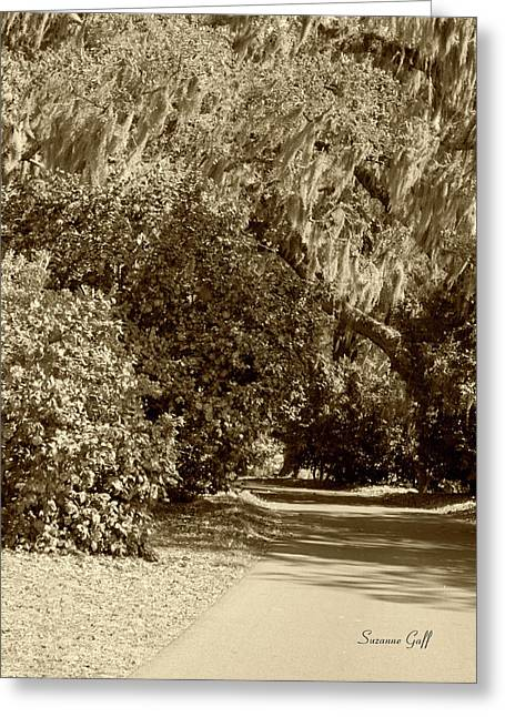 Old Roadway Greeting Cards - A Lowcountry Springtime Greeting Card by Suzanne Gaff