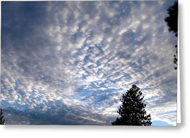 Intrigue Greeting Cards - A Mackerel Sky Greeting Card by Will Borden