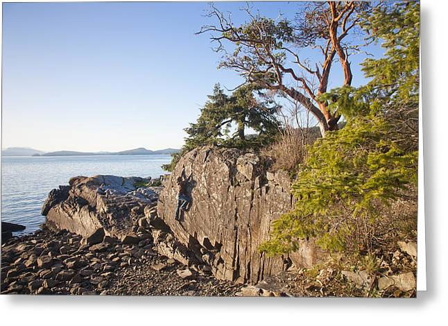 30-35 Years Greeting Cards - A Man Climbs A Rock Face On A Sunny Day Greeting Card by Taylor S. Kennedy