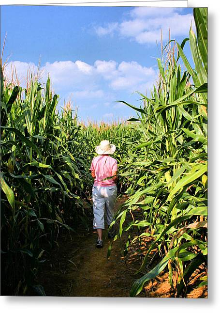 Corn Maze Greeting Cards - A-Maze-ing Greeting Card by Kristin Elmquist