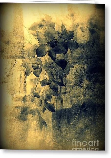 Avantgarde Greeting Cards - A Medley of Orchids Greeting Card by Susanne Van Hulst