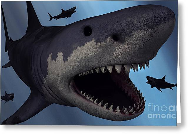Generate Life Greeting Cards - A Megalodon Shark From The Cenozoic Era Greeting Card by Mark Stevenson