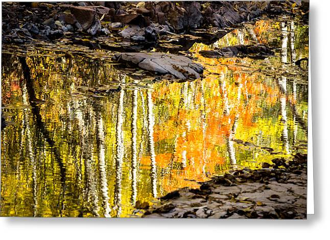 Fall Colors Greeting Cards - A Moment of Reflection Greeting Card by Mary Amerman