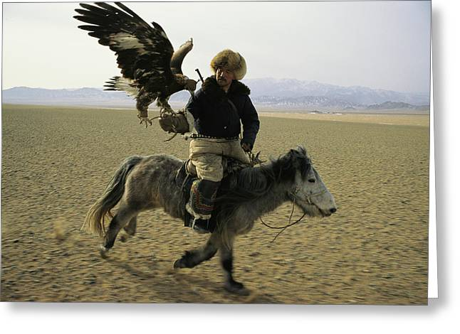 Falconry And Falconry Equipment Greeting Cards - A Mongolian Eagle Hunter In Kazahkstan Greeting Card by Ed George