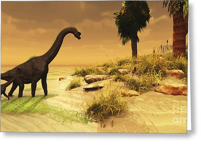 Island .oasis Greeting Cards - A Mother Brachiosaurus Dinosaur Greeting Card by Corey Ford