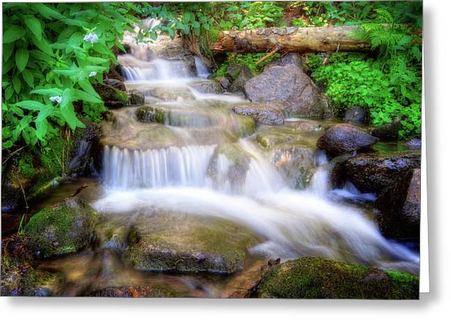Stream Greeting Cards - A mountain stream pleases me more than the sea Greeting Card by Utah Images