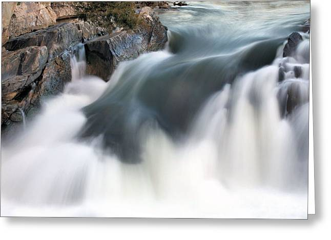 A Natural Flow Greeting Card by JC Findley