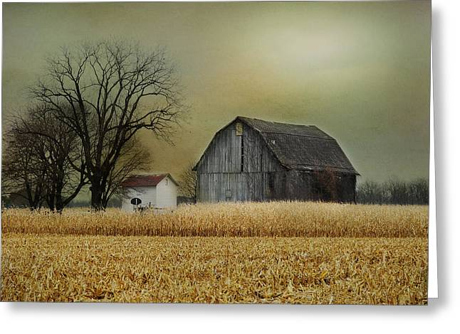 Shed Digital Art Greeting Cards - A New Dawn Greeting Card by Mary Timman
