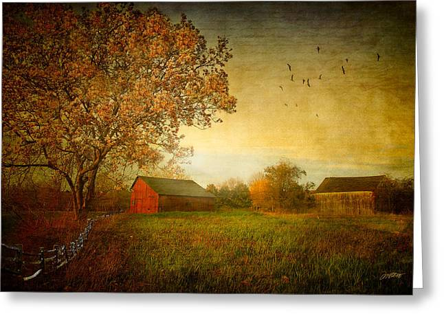 Barn Digital Art Greeting Cards - A New Dawn Greeting Card by Michael Petrizzo