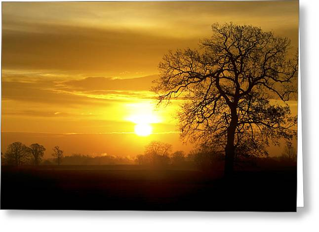 Mdf Mounted Print Greeting Cards - A Norfolk Sunrise Greeting Card by Darren Burroughs