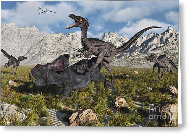 Dromaeosaurid Greeting Cards - A Pack Of Velociraptors Attack A Lone Greeting Card by Mark Stevenson