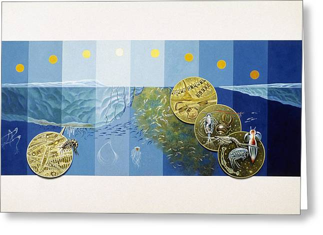 Plankton Greeting Cards - A Painting Depicts The Tiny Life Greeting Card by Davis Meltzer