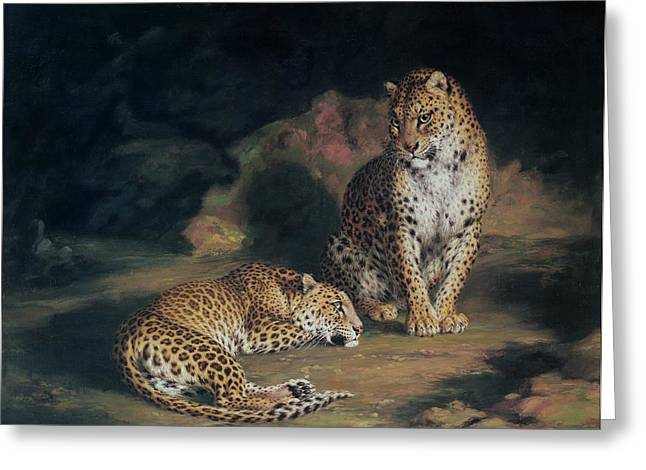 Cat Greeting Cards - A Pair of Leopards Greeting Card by William Huggins