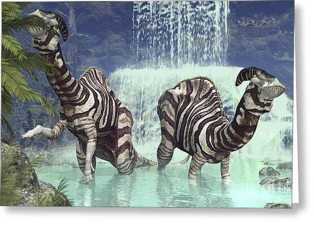 A Pair Of Parasaurolophus Feed On Flora Greeting Card by Walter Myers